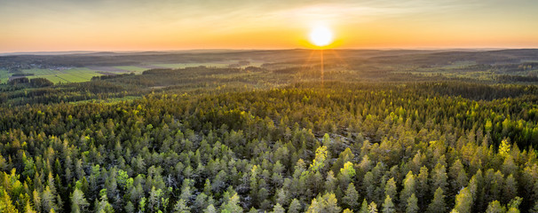 Drone photo of sunrise over forest in North Sweden - golden sun light with beams and shadows. Västerbotten, West Bothnia province, north of Sweden
