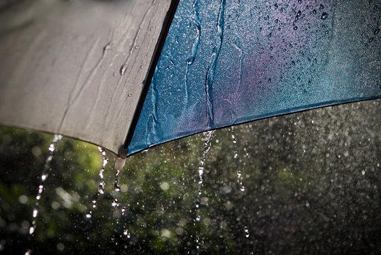 underneath an umbrella during a summer shower