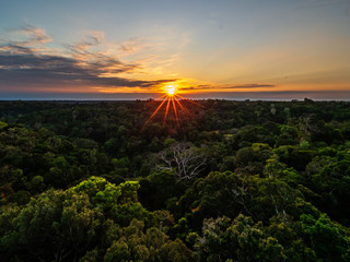 Sunrise at the forrest. MUSA, Manaus-AM