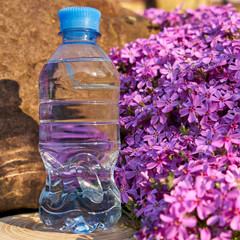 Plastic bottle with clean drinking water.