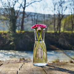 Image of a glass flask with flowers.