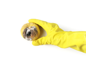 Woman yand in yellow rubber glove holding rotten pumpkin