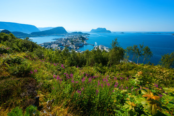 View of Alesund port town on the west coast of Norway.