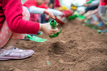Closeup group of Asian school kids learn to plant tree seeds on sand outdoor