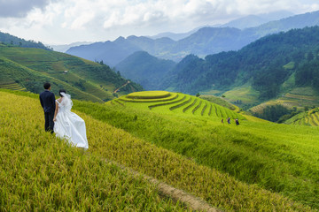 Garden Poster Rice fields Terraced rice field in Mu Cang Chai, Vietnam, with happy travel couple
