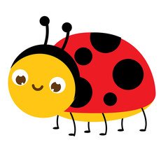 Cartoon ladybug. Cute ladybird insect character. Vector illustration