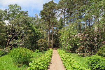 Inverewe Garden in Poolewe,  Schottland