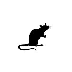 Standing Rat silhouette. Rat icon. vector