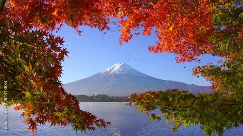 Wall mural Mountain fuji with red maple in Autumn, Kawaguchiko Lake, Japan