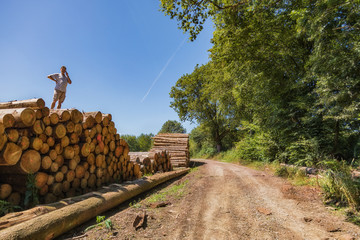 A man has climbed on to a huge pile of wood and is on the phone.
