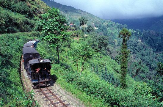 Asia, India, Darjeeling. The Darjeeling Himalayan Railway, a World Heritage Site, cuts through the lush hillsides of Darjeeling, India.