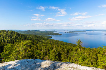 Panorama of Koli national park and Pielinen lake in Finland