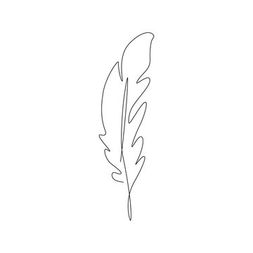 bird feather one line drawing. Continuous line. Hand-drawn minimalist illustration, vector.