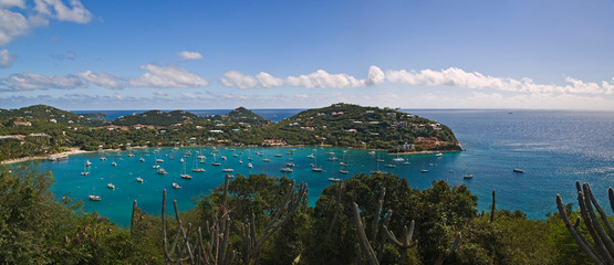 Tuinposter Kust A scenic of Cruse Bay, St John U.S. Virgin Islands