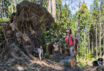 Woman with two dogs at a huge ripped root.