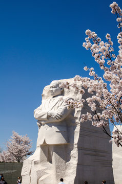Martin Luther King Jr Memorial during Cherry Blossom Festival season in the spring - April 2019