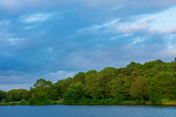 Wald am See, bei blauem Himmel. Standort: Deutschland, Nordrhein-Westfalen, Hoxfeld