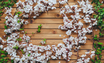 Branches with apricot petals and bushes with green leaves are beautifully laid out on a wooden...