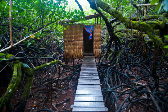 Jungle toilet on a an islet at the Marovo Lagoon, Solomon Islands, Pacific