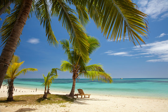 Beach, palm trees and lounger, Plantation Island Resort, Malolo Lailai Island, Mamanuca Islands, Fiji, South Pacific