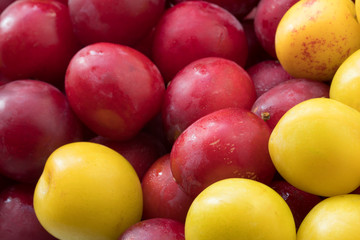 Yellow and red plums