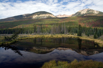Wall Mural - North America - USA - Colorado - Rocky Mountain National Park. Beaver Ponds area on west side of park.