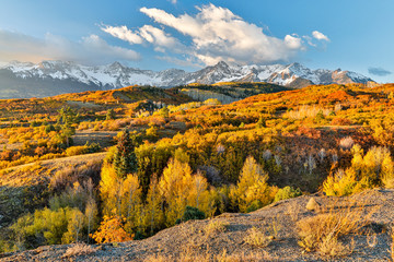 Wall Mural - USA, Colorado, Ridgway. Morning on mountain range and Fall foliage
