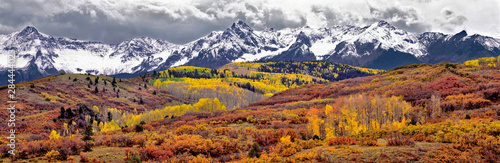 Wall mural USA, Colorado, San Juan Mountains. Autumn turns aspen leaves orange and gold at Dallas Divide in the San Juan Mountains in Colorado