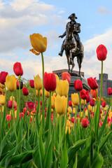 Stores à enrouleur Commemoratif Boston, Massachusetts, USA. George Washington Statue with Tulips in the foreground. Boston Public Garden.