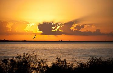 Sunrise over Mississippi River near Venice, Louisiana