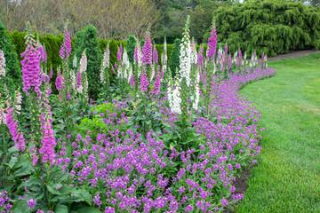 Obraz Longwood Gardens, spring flowers, Kennett Square, Pennsylvania, USA - fototapety do salonu