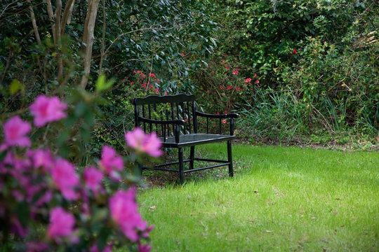 USA, South Carolina, Charleston. Vintage bench in a garden at historic Magnolia Plantation.