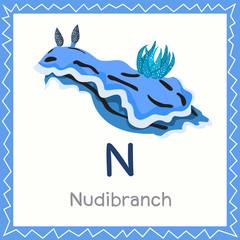 Illustrator of N for Nudibranch animal