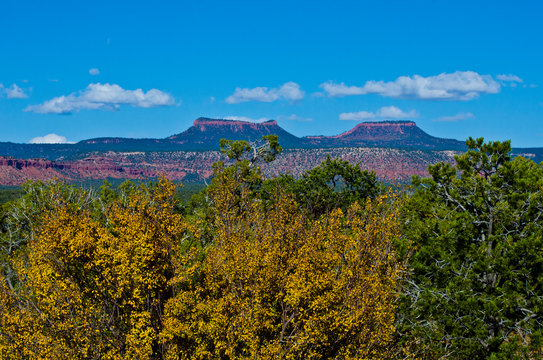 USA, Utah, Bluff, The Bears Ears of the Bears Ears National Monument