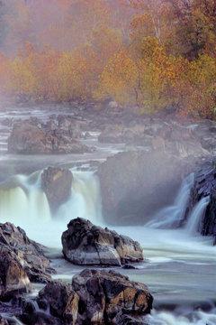 USA, Virginia, McLean. Stream in Great Falls State Park. Credit as: Jay O'Brien / Jaynes Gallery / DanitaDelimont.com