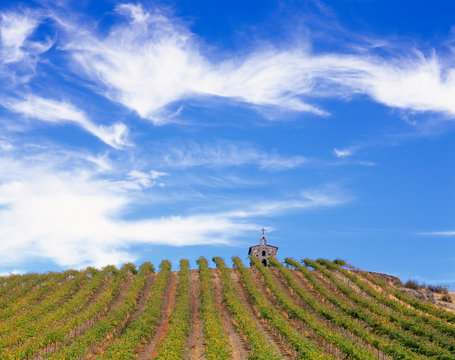 WA, Yakima Valley, Red Willow Vineyards with stone chapel