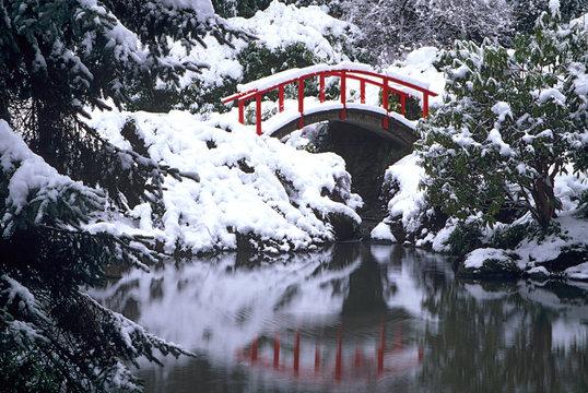 WA, Seattle, Moon bridge and pond after winter snow storm; Kubota Garden