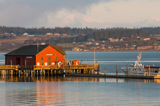USA, WA, Whidbey Island, Coupeville. Wharf and whale watching boat at first light Penn Cove