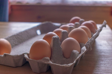 Eggs in a holder diagonal