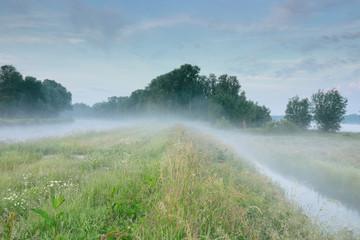 Wall Mural - serene misty morning over river