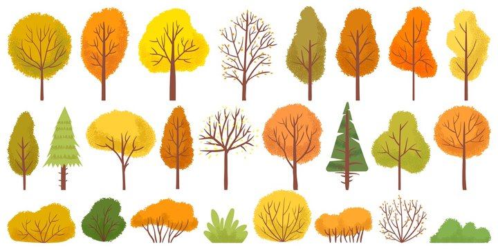 Yellow autumn trees. Colorful garden tree, autumnal garden bush and fall season tree leaves. Forest gold and green branches, autumn yellow and orange park trees. Isolated vector illustration icons set