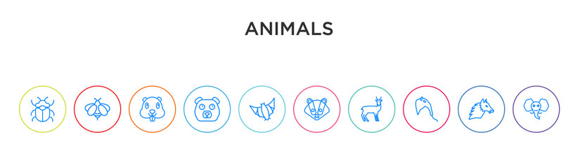 animals concept 10 outline colorful icons