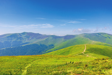 wonderful summer mountain landscape. beautiful green sunny scenery. path through grassy meadow on rolling hills. stoj and velykyy verkh peaks of borzhava ridge in the distance. transcarpathia, ukraine