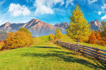 composite rural area in high tatra mountains. beautiful autumn weather on a sunny day. wooden fence along the country road uphill. trees in fall foliage. blue sky with clouds