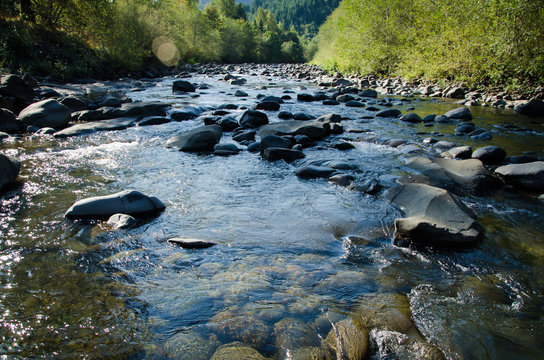 Molalla River in the summer