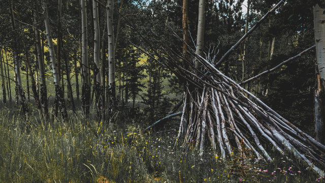 Mysterious stick structure the Colorado Mountain