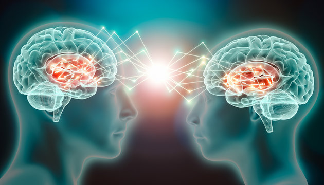 Love emotion or empathy cerebral or brain activity in caudate nucleus. Interaction and connection between two people. Conceptual 3d illustration of interactive neurological stimulation or telepathy.