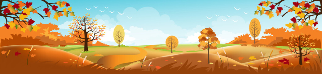 Fond de hotte en verre imprimé Piscine Panoramic of Countryside landscape in autumn, Vector illustration of horizontal banner of autumn landscape mountains and maple trees fallen with yellow foliage.