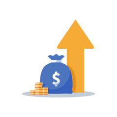Obraz Income increase, financial strategy, return on investment, fund raising, long term increment, revenue growth, loan installment - fototapety do salonu