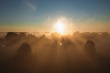 Amazing perfect magic early morning landscape. Aerial view of peaceful foggy and misty sunrise over tops of green trees of forest. Horizontal color photography.